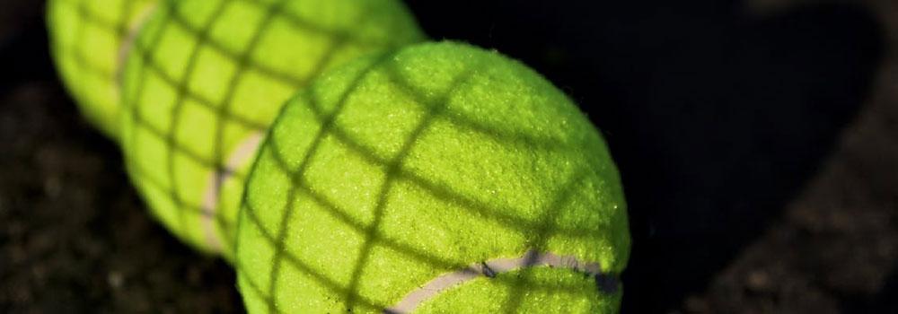Level 2 School Games KS2 SEND Mini Red Tennis